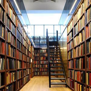 Библиотеки Глинки